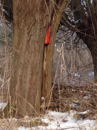 een rode jerrycan